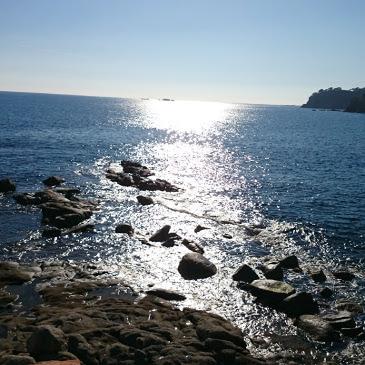 illes-formigues-calella-de-palafrugell